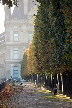 Paris in Autumn  - Tuileries Garden located between the Louvre Museum and the Place de la Concorde in the 1st arrondissement of Paristulleries.