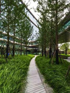上海凌空SOHO丨TOPO丨 Modern Planting, Planting Plan, Eco Garden, Rain Garden, Plant Design, Garden Design, Modern Tropical House, Landscape Architecture Design, Parking Design