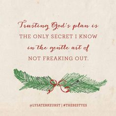 """Trusting Gods plan is the only secret I know in the gentle art of not freaking out"" Lisa Terkeurst"