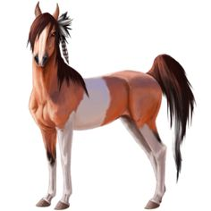 Howrse is the Best Horse Game ever! Add me as a friend!  AutumnLovesJr