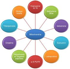 Methylene blue is a good mitochondrial and cognitive enhancer, with other nice effects. Read on to learn how methylene blue can benefit you and which variety is the best to use. ContentsIntroduction to Methylene BlueMethylene BlueSnapshotProsConsBenefits of Methylene Blue1) Methylene Blue is an Anti-Depressant2) Methylene Blue is Anti-Cancer3) Methylene Can Help Alzheimer's, Dementia and Parkinson's …