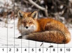 """Математические пазлы. Тема: """"Животные"""""""