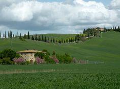 Il Tesoro di Siena: I calanchi e le biancane di Leonina (Asciano)