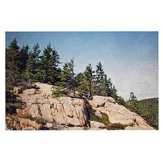 KESS InHouse Jillian Audrey 'Windswept Cliffs' Brown Blue Dog Place Mat, 13' x 18' * To view further, visit now : Dog food container