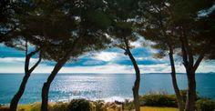 Costa de los Pinos, #Mallorca. Spain Absolutely beautiful....