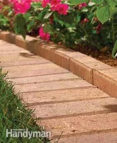 Paver Border: Both concrete and brick pavers make a simple, handsome border and work well as edging material. They're ideal when you want a wide border that keeps grass out of the garden, yet allows flowers and other plants to spill over without intruding onto the grass. It also provides a flat surface for the lawn mower wheel to roll along, making a clean cut and you shouldn't have to trim after mowing. Unlike regular bricks, concrete and brick pavers are designed for rugged outdoor use.