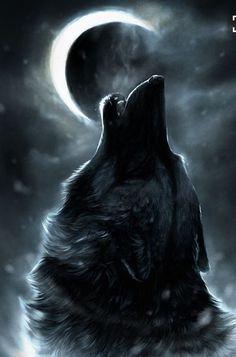 """..Luna, despertaste la loba que dormía abrazada a mi soledad. """" Liz"""
