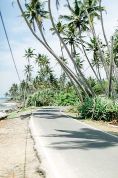 Sri Lanka – unsere Reise auf die grüne Insel, Sri Lanka, Beach, Fernweh, Reisen, Asien
