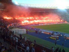 Rapid Wien Football Fans, Sports, Heroes, Football Soccer, Hs Sports, Sport, Exercise