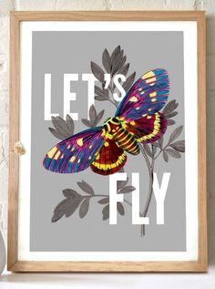 Butterfly in Flight//
