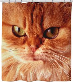 Check out my new product https://www.rageon.com/products/orange-cat-shower-curtain?aff=BWeX on RageOn!