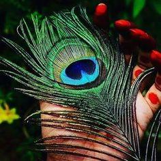 Radha Krishna Songs, Krishna Flute, Radha Krishna Pictures, Lord Krishna Images, Radha Krishna Photo, Krishna Photos, Krishna Art, Lord Murugan Wallpapers, Shree Krishna Wallpapers
