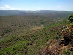 Buffalo Gorge Hiking | Trails near Middelburg | Day Walks - Dirty Boots Epic Thunder, Thunder And Lightning Storm, Hiking Routes, Hiking Trails, Abseiling, Tree Identification, Land For Sale, Bird Species, Walks