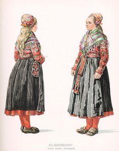 http://www.folkdrakt.se/bild/halsingland/Delsbo-1907-d.jpg