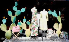 Dolce and Gabanna Cactus display 3