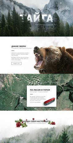 TAIGA / Adventure tours in Siberia on Behance