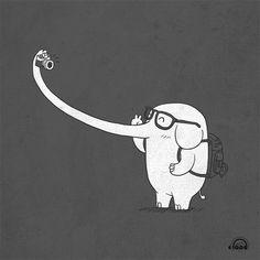 (1) Tumblr selfy elephant