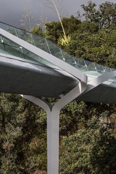 Point Resolution Pedestrian Bridge, Auckland, New Zealand designed by  Warren and Mahoney Architects