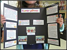 Science Fair Made Easy (and Free!) - Everything you need to make a class display board AND a mini board on construction paper for each student to take home