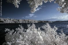 Lakeview from beyond - Infrared picture of the Lake Ratzeburg in Germany