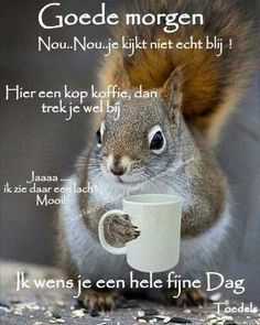 good morning squirrel with coffee mug Good Morning Snoopy, Good Morning My Friend, Good Morning Coffee, Good Morning Good Night, Morning Wish, Good Morning Images, Good Morning Quotes, Monday Morning, Apologizing Quotes