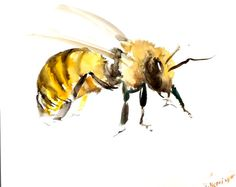 Bee original watercolor painting 8 X 10 in animal by ORIGINALONLY, $22.00
