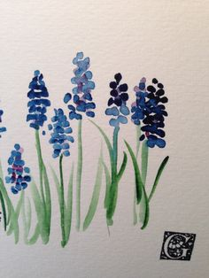Grape Hyacinths Watercolor Card II by gardenblooms on Etsy