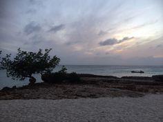 Malmok Aruba
