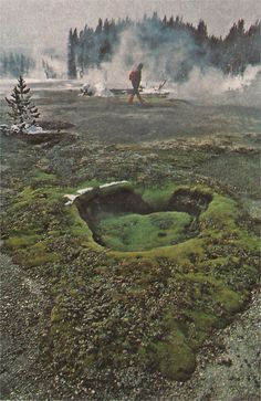 .Vintage National Geographic - Yellowstone park