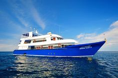 Great Liveaboard Value On Thailand Manta Queen 3 - https://www.liveaboard.com/diving/thailand/manta-queen-3?cid=7036  More Thailand Info - http://www.diveguide.com/thailand-dive-travel