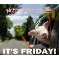Happy Friday Everyone!!!! tastybrand's photo on Instagram #tastybrand #tasty #tgif #organic #nongmo #vegan #snacks #herecomestheweekend #howifeeltoday