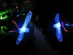 dragonflies made from repurposed plastic bottles, straws and LED lights ( would try using solar lights instead)