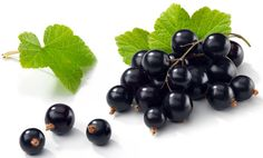 British researchers found that Black Currents were one of the foods to reduce age-related chronic inflammation and development of such diseases--British Journal of Nutrition