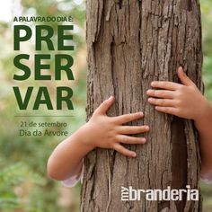 Card Dia da Árvore