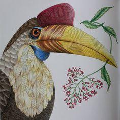 Tenhle obrázek mě moc bavil :-) #tropicalwonderland #milliemarotta #coloring…