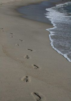 Pen's foot prints for a moment in time.