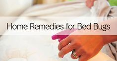 Bed Bugs Remedy Dryer Sheets