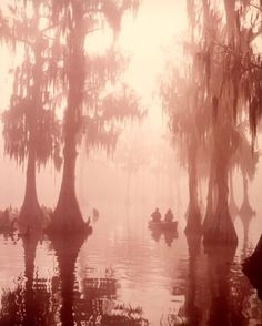 'Cypress Swamp' Two men fishing in a boat in a cypress swamp, 17th December 1986. (Photo by H. Armstrong Roberts/Alamy Archives/GALERIEPRINTS.com)