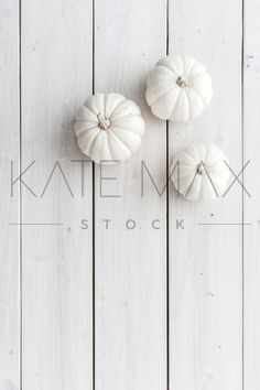 """Gorgeous, fresh Fall images: ghost pumpkins, pinecones, and whitewashed wood!  """"PRETTINESS for my Instagram feed!!"""" > > TONS of gorgeous images for YOU to use!! > > KateMaxStock.com  Styled Stock Photography / KateMaxStock / Flat Lay / Product Mockup / Pretty Office / Desk From Above / Gorgeous Branding / Branding Colors / Office Styling / Pretty Office / Social Media Background / Instagram Image / Blog Photo / Photos for your Blog    katemaxstock-2146"""