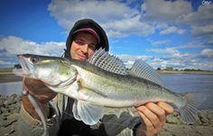 Dicht am Fisch - Angeln und Fischen