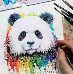 Cuddly and Colorful Panda by @sora.art . Shared by @kitslam - YouTube | Instagram | Facebook Watercolor Ideas, Watercolour, Watercolor Paintings, Art Attack Ideas, Panda Drawing, Animal Art Projects, Animal Art Prints, Color Pencil Art, Bear Art