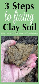 3 Steps for Fixing Clay Soil - Give your garden a boost by amending your clay soil.   Make your plants thrive!   Click here now, or re-pin for later! www.HarmonyHillsHomeandGarden.com