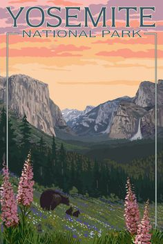 Bears & Spring Flowers - Yosemite National Park, California - Lantern Press Poster