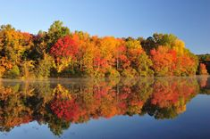 Fall colors in Minnesota are on vibrant display each autumn in the Brainerd Lakes Area. and you can definitely see it. Brainerd Minnesota, Autumn Leaf Color, Minnesota Home, Minnesota Camping, State Parks, My Idol, Places To Go, Beautiful Places, Simply Beautiful