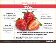 Las fresas no son sólo una deliciosa fruta, sino también un alimento cargado de numerosos beneficios para la salud. Conozcámoslos.  A tu Salud con #ConsejosTanyari