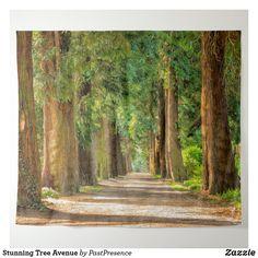 Stunning Tree Avenue Tapestry
