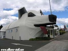 Some really strange architecture on these buildings. Here's one of those weird buildings.
