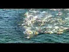 ▶ Ironman Triathlon Motivation- YouTube #ironman #ironmantraining #triathlon