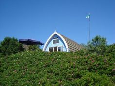 Our lovely holiday home 'Zonrondom' on Holland's most beautiful isle: Vlieland! Located in the dunes, and only a 2 minute walk from the beach! We also rent it out... because sharing the good things in life makes me happy! www.zonrondom.nl