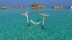 Noonu Atoll Medhufaru Beachfront Resort 2 Restaurants Outdoor Pool B est Family Resort Maldives Main amenities 25 gu. Maldives Luxury Resorts, Hotels And Resorts, Underwater Restaurant, Mermaid Home Decor, Island Villa, Water Villa, Hotel Amenities, Family Resorts, Resort Villa